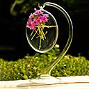 centres de table suspendus vase de verre clair de deocrations de table