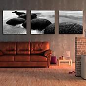 キャンバスセット 風景 Modern トラディショナル,3枚 横長 版画 壁の装飾 For ホームデコレーション
