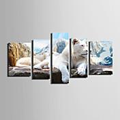 Životinja Europska Style,Pet ploha Platno Vertikalno Ispis Art Zid dekor For Početna Dekoracija