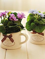 6.5 'h de mini arreglo floral begonia (azul)