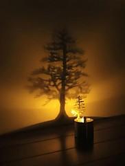 モクレンシャドウ投影常夜灯創造的主導のベッドサイドランプ