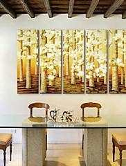 e-HOME® plátně umění květinové dekorativní malba set 5