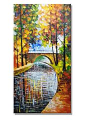风景画 hy141150hand malované krajiny moderní strom léto sní olejomalba na plátně jednoho panelu připraven k zavěšení