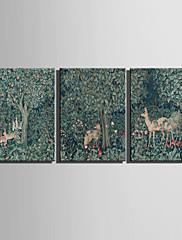 動物 / 植物の キャンバスプリント 3枚 ハングアップする準備ができました , 横式