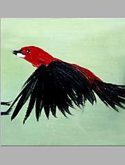 Hånd-malede Dyr Kunstnerisk Et Panel Kanvas Hang-Painted Oliemaleri For Hjem Dekoration