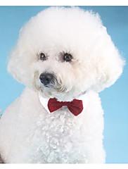 Hund Slips/Sløjfer Hundetøj Afslappet/Hverdag Solid Guld Sort Sølv Rød