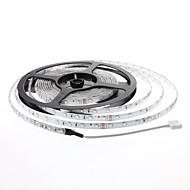 Tira LED Impermeable de Exterior con Mando a Distancia de 24 Botones (5M)