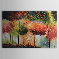 Handgeschilderde Landschap Eén paneel Canvas Hang-geschilderd olieverfschilderij For Huisdecoratie
