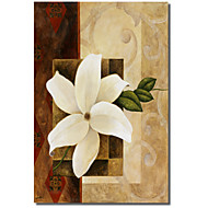 Painettu Canvas Art White Petal Pablo Esteban venytetty Frame