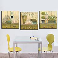 Stretched Canvas Art Still Life Floral Decoration Set of 3