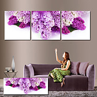 Stretched Canvas Art Floral Purple Petals Set of 3