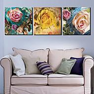 Leinwand Kunst Blumen Rosen mit Blue Ribbon Set von 3