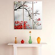 Canvas Art Botânico Red Maple Conjunto de 3