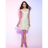 TS Couture® Cocktail Party / Holiday / Graduation Dress - Ivory Plus Sizes / Petite Sheath/Column Bateau Short/Mini Lace