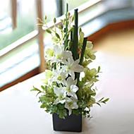 """16.5 """"západní Orchid dohody s černým čtvercem Váza"""