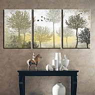 Stretched Canvas Art Botanical The Silent Trees Set of 3
