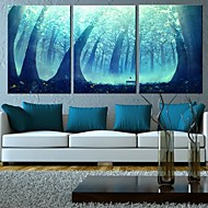 Canvas Art Fantasia Floresta Conjunto de 3