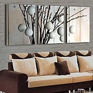 Stretched Canvas Print Art Botanical kapok Set of 3