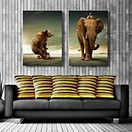 Canvastaulu art karhu ja elefantti koristelu sarja 2