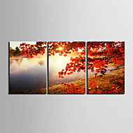 Canvas Set Klassiek Realisme,Drie panelen Horizontaal Print Art Muurdecoratie For Huisdecoratie