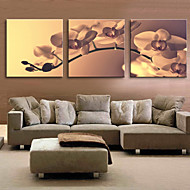 Canvas Art Floral Tender Orchid Set of 3