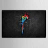 Painted Parrot main peinture à l'huile animale 1211-AN0030
