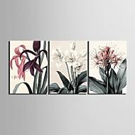 סט ציור דקורטיבי פרח אמנות בד מתוח של 3