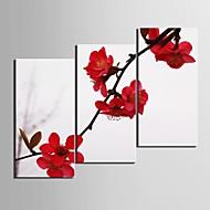 e-Home® allungata Stampa su tela rosso prugna fiore decorazione pittura set di 3