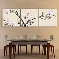 e-FOYER toile tendue art magnolia rose peinture décoration ensemble de trois