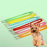 Cat / Dog Leash Adjustable/Retractable / Cosplay Rainbow Nylon