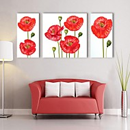 E-HOME® Stretched Canvas Art Red flowers Decorative Painting Set of 3