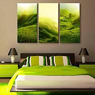 e-Home® Canvastaulu art rinteellä maisemia sisustusmaalaus sarja 3