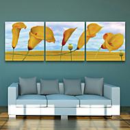 e-home® strukket lerret kunst gule blomster dekormaling sett med 3