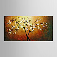 Oil Painting Pachira Macrocarpa Tree Paintings Hand Painted Canvas with Stretched Framed