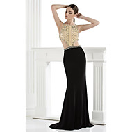 Formal Evening Dress - Multi-color Plus Sizes / Petite Trumpet/Mermaid Spaghetti Straps Floor-length Spandex