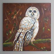 peinture à l'huile moderne main hibou abstrait toile avec cadre étiré peint