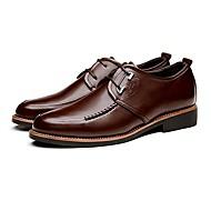 Oxford-kengät Miesten kengät Nahka Musta / Ruskea Toimisto / Rento