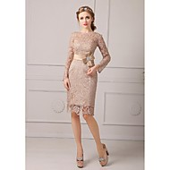 Sheath/Column Petite Mother of the Bride Dress - Champagne Knee-length Lace