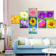 VISUAL STAR® 8 Pieces Beautiful Flowers Canvas Painting Wall Art Picture Print on Canvas Ready to Hang