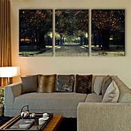 E-HOME® Stretched LED Canvas Print Art Street LED Flashing Optical Fiber Print Set of 3