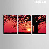 E-HOME® Stretched Canvas Art Sunset Under The Tree Decoration Painting Set of 3