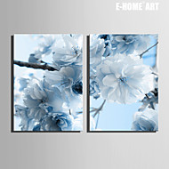 E-HOME® Stretched Canvas Art Light Blue Flowers Decorative Painting Set of 2