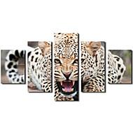 Animal Toile Cinq Panneaux Prêt à accrocher , Format Horizontal