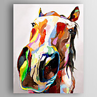 Pintados à mão AnimalModerno 1 Painel Tela Pintura a Óleo For Decoração para casa