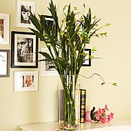 Hedvábí / Umělá hmota Rostliny Umělé květiny