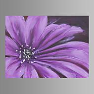 Botánico Impresión de la lona Un Panel Listo para colgar , Horizontal