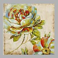 מצויר ביד פרחוני/בוטניפסטורלי פנל אחד בד ציור שמן צבוע-Hang For קישוט הבית