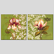 Ručně malované Květinový/Botanický motivModerní / evropský styl Dva panely Plátno Hang-malované olejomalba For Home dekorace