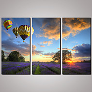 3 Panels Lavender Landscape with Colorful Balloons  Modern Canvas Print for Office and Livingroom Decoration Unframed