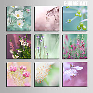 E-HOME® Stretched Canvas Art  Flowers  Series Decoration Painting MINI SIZE One Pcs
